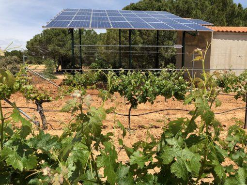 Bombeo solar de 5,5CV para viña en Villamalea, incluido servicios auxiliares.