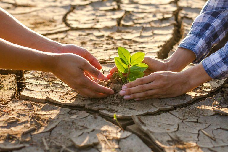 Crisis climática: 2010-2020, la peor década para el clima