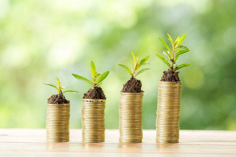 Ahorro y sostenibilidad en las fincas de riego