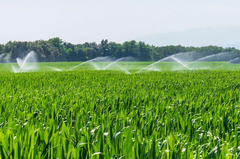 Soluciones para abaratar la factura de la luz en la agricultura