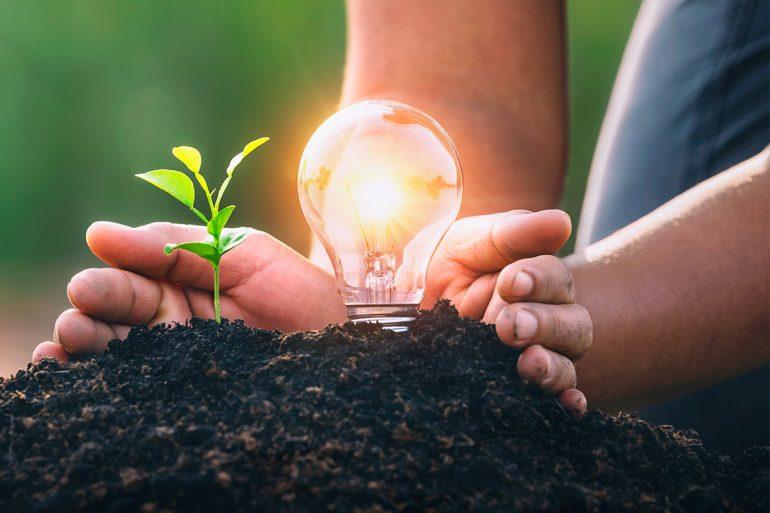 Consecuencias del cambio climático y soluciones